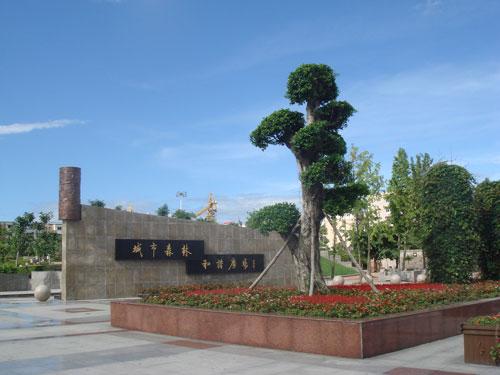 打造后的成都市青白江城市森林和谐广场